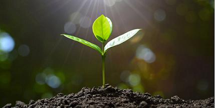 土壤与固废检测与分析