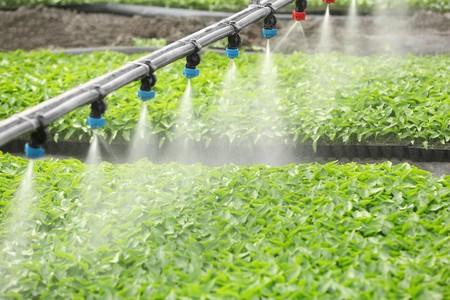 水溶肥料检测套餐