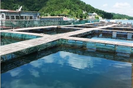 水产品兽药残留快速检测服务