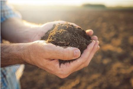 农产品种植土及灌溉水质量监控