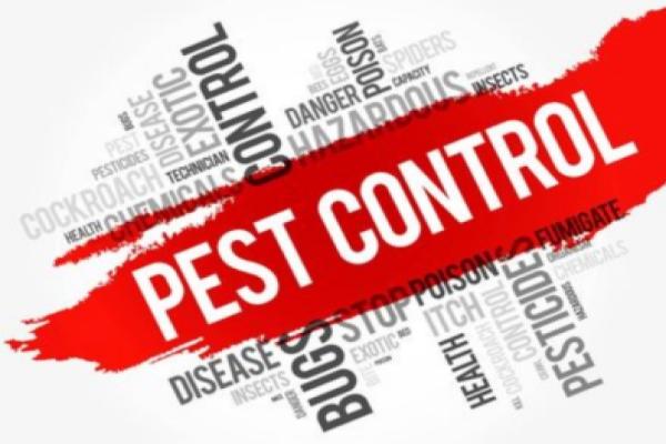 虫害控制,消杀,有害生物风险管理解决方案