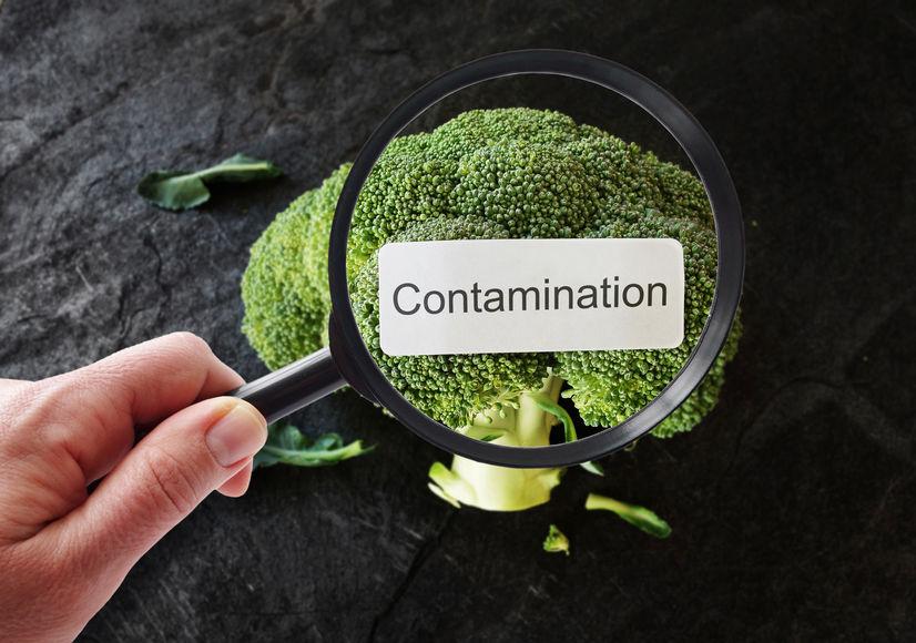 食品中污染物检测