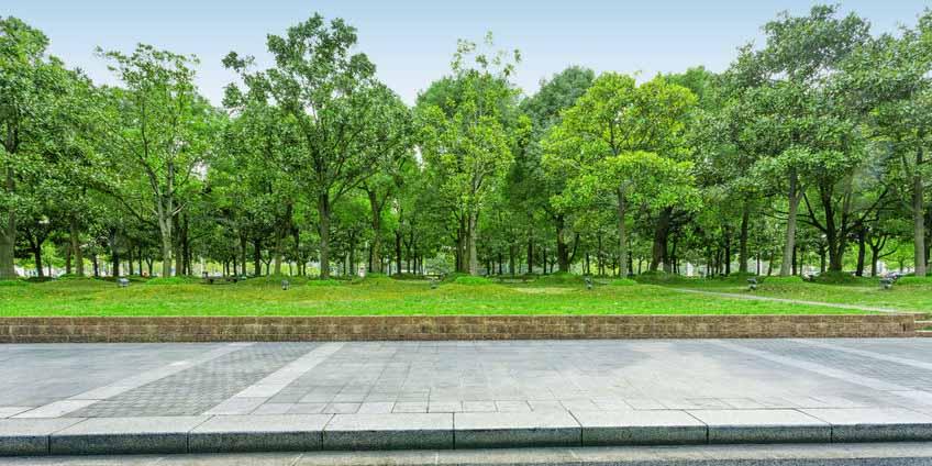 园林绿化水质、土壤、肥料、园林植物检测