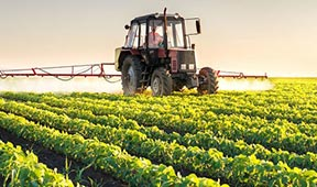 良好农业规范GAP认证